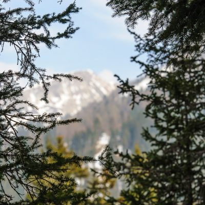 Ausflug in den Naturpark Puez-Geisler am 17.03.2012 / Südtirol / Alto Adige / Italien