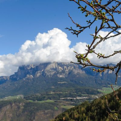 Touriausflug durch Südtirol am 06.04.2012 / Südtirol / Alto Adige / Italien